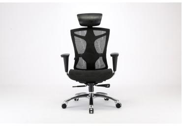 Ghế lưới công thái học Ergolife - Ergonomic chair
