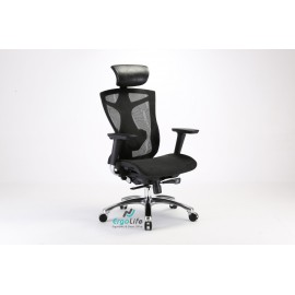 Ergonomic Chair ERC-01