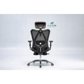 Ergonomic chair ERC-18SF