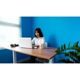 Bộ bàn làm việc đứng Ergonomic ERD_1200 (700x1.400mm_Brown-Walnut)