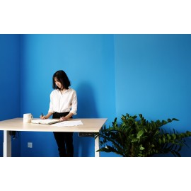 Bộ bàn làm việc đứng Ergonomic ERD_1200 (700x1400mm_Yellow-Oak)